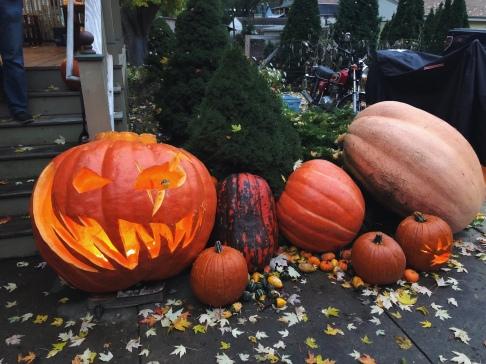 Halloween in Fall Creek